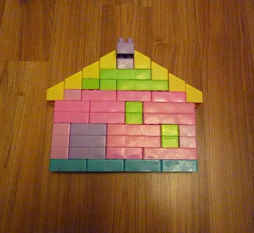 (20101120) 托托按照图纸搭积木