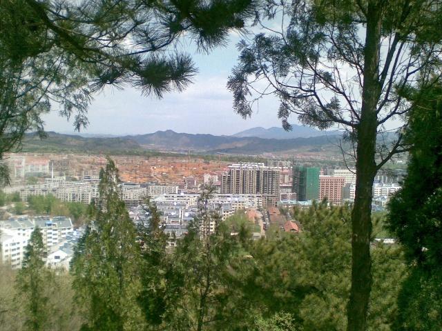 透过浓密的树林,审视这座城市,哪里会有属于我的一片窗×&&