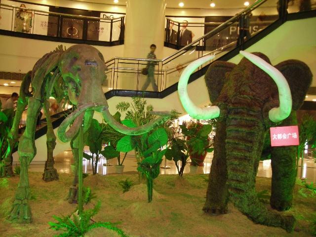 中国史前动物化石展在重庆大都会广场举行(17p)