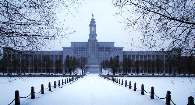 2010-11-27,哈尔滨狂风卷着鹅毛大雪,漫天飞舞,地面积雪厚达10几公分图片