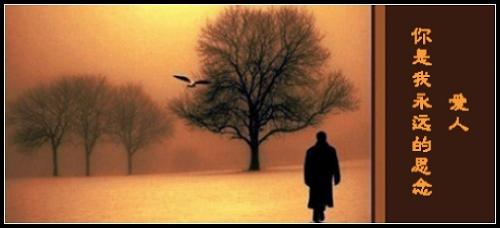 看你盈盈地向我跑来  看你飘飘长发迎风飘逸  在,风中雨中的窈窕背影图片