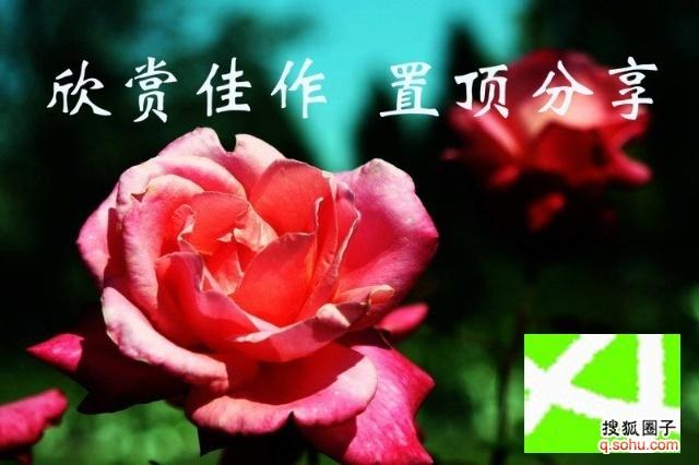 刘存惠写意花鸟画