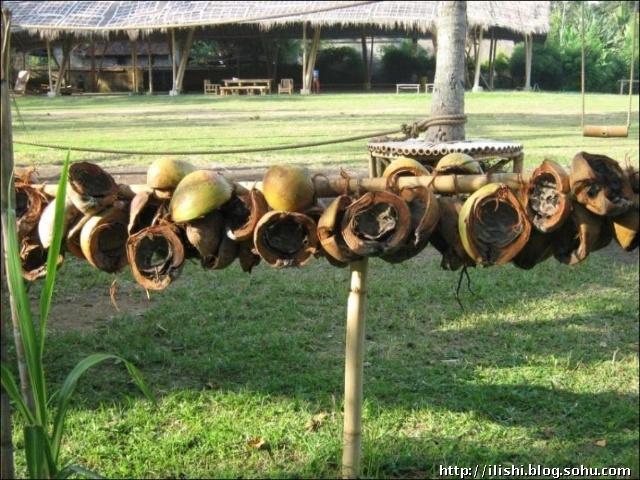 巴厘岛上的绿色学校