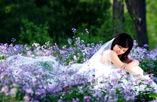 壁纸 花 婚纱 婚纱照 桌面 640_416